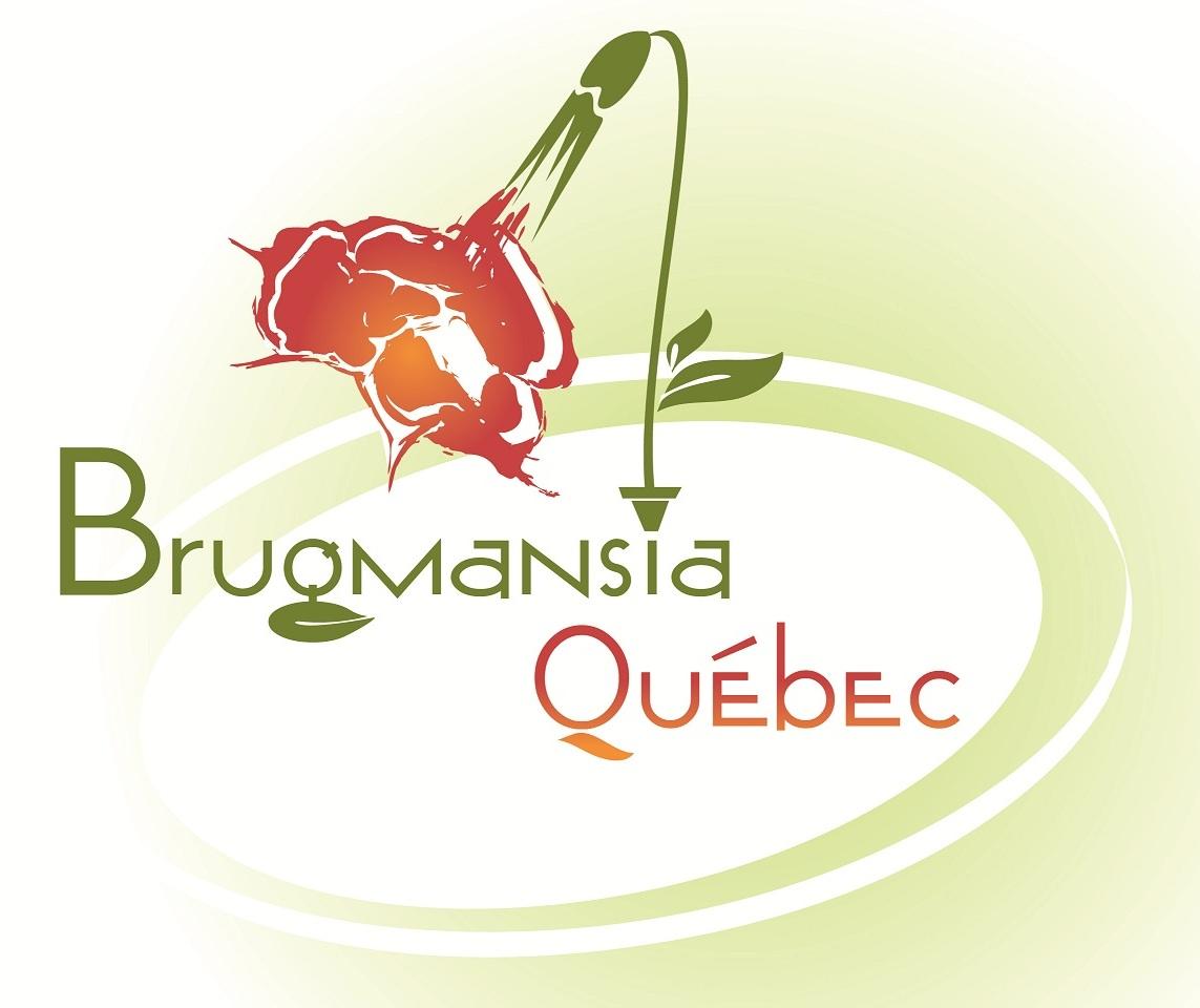 Logo brugmansia QC